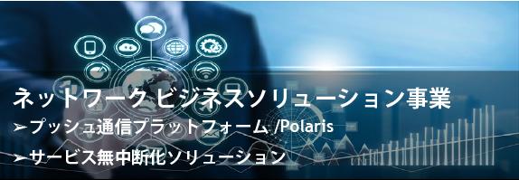 ネットワークビジネスソリューション事業
